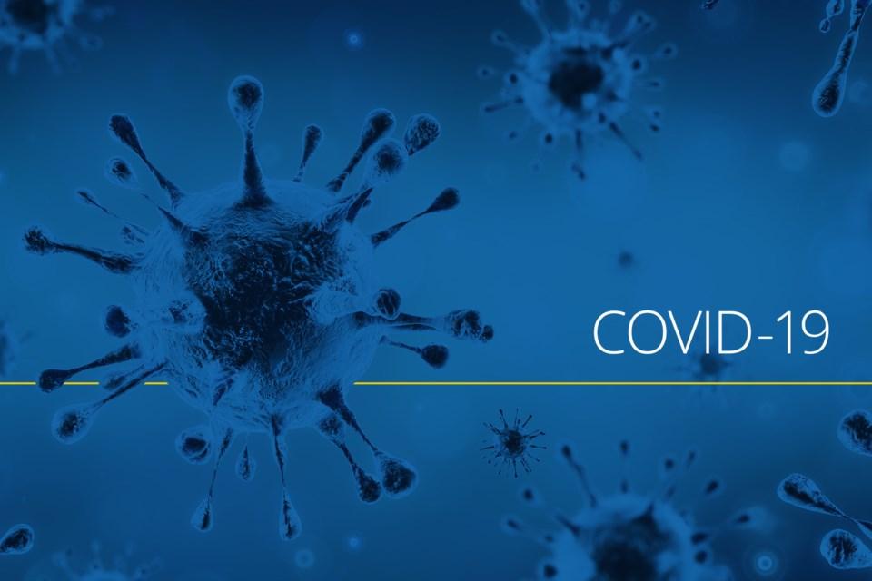covid19 (2)